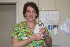 Vet holding the rabbit