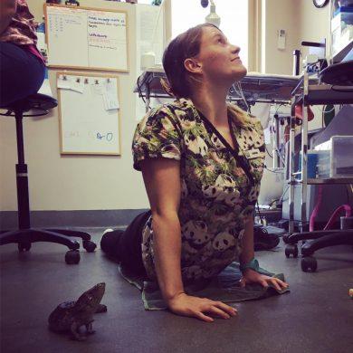 Vet Nurse Ashleigh