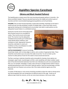Aspidites-Woma-and-Black-Headed-Python-Care-Sheet.pdf