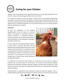 Chicken-Care-.pdf
