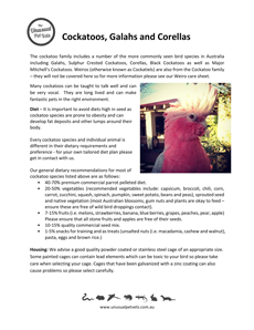 Cockatoos-Galahs-and-Corellas-Care-Sheet.pdf