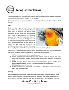 Conure-Care-Sheet.pdf