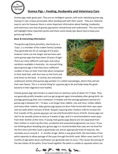 Guinea-Pig-Care-Sheet.pdf