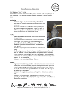How-to-Nurse-your-Bird-at-Home.pdf
