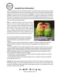 Lovebird-Care-Sheet.pdf