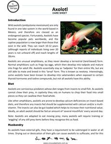 Australian-tree-frog-care-sheet.pdf