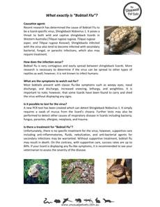 Bobtail-Flu.pdf
