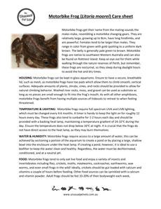 Motorbike-Frog-Care-Sheet.pdf