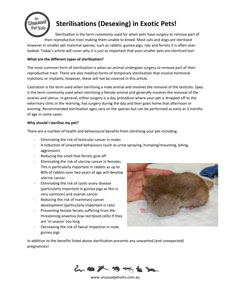 Sterilisation-Desexing-in-Exotic-Pets.pdf