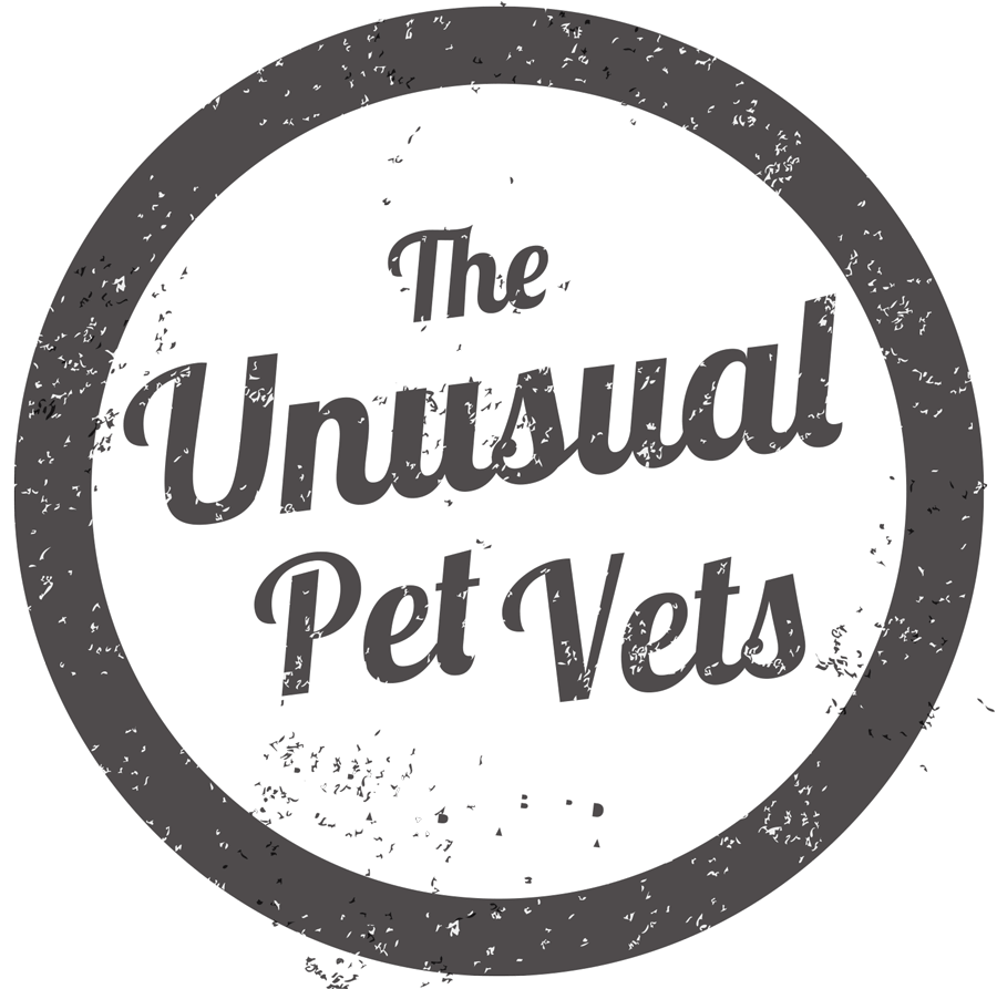 The unusual pet vets logo