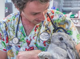 Dr james with rabbit