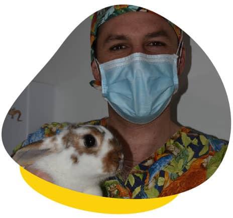 Dr james rabbit