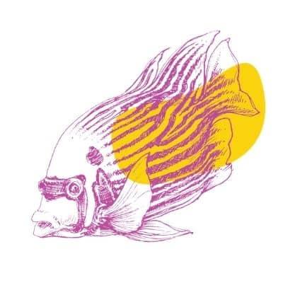 Fish Questionanaire